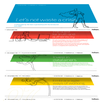 The Team_Let's not waste a crisis_White paper